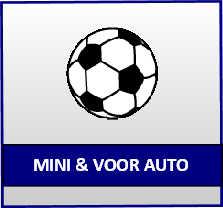 psv mini en voor auto